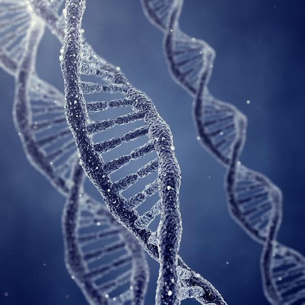 Фото №1 - В Саудовской Аравии работают над банком ДНК