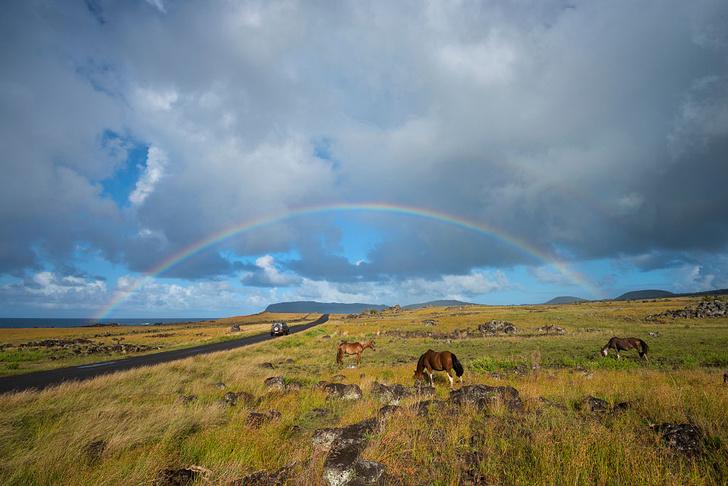 Фото №8 - Впадая в крайности: 10 самых необычных национальных парков на планете