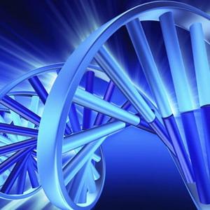 Фото №1 - Цифровые данные сохранит ДНК