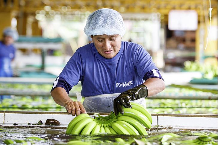 Фото №6 - Рабочий момент: банановый рай