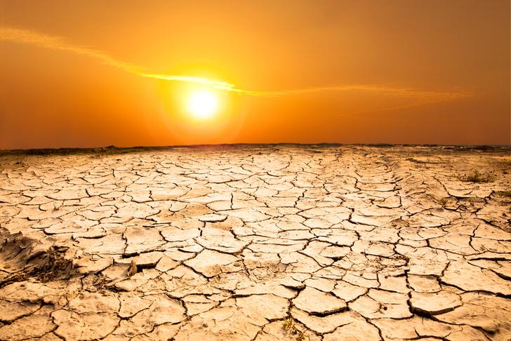 Фото №1 - Июль 2016 года стал самым жарким в истории метеонаблюдений