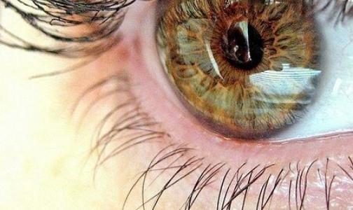 Фото №1 - Ученые вырастили искусственную сетчатку глаза