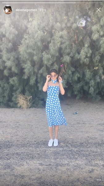 Фото №1 - Запоминающиеся образы звезд на Coachella 2017