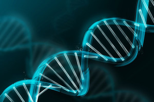 Фото №2 - Лекция Ильи Захарова «Индивидуальные различия в способностях: роль среды и генов»