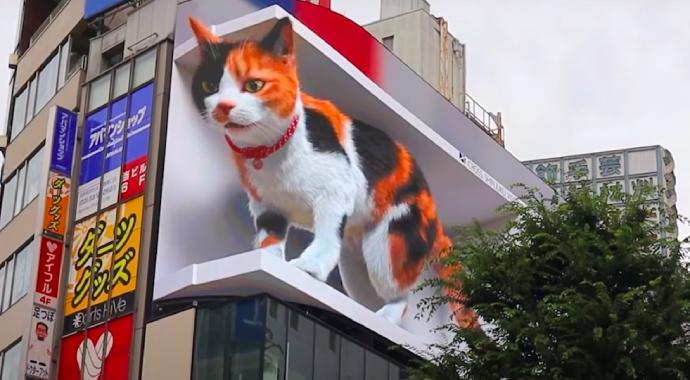 В Японии появился гигантский трехмерный кот: его мечтают увидеть все
