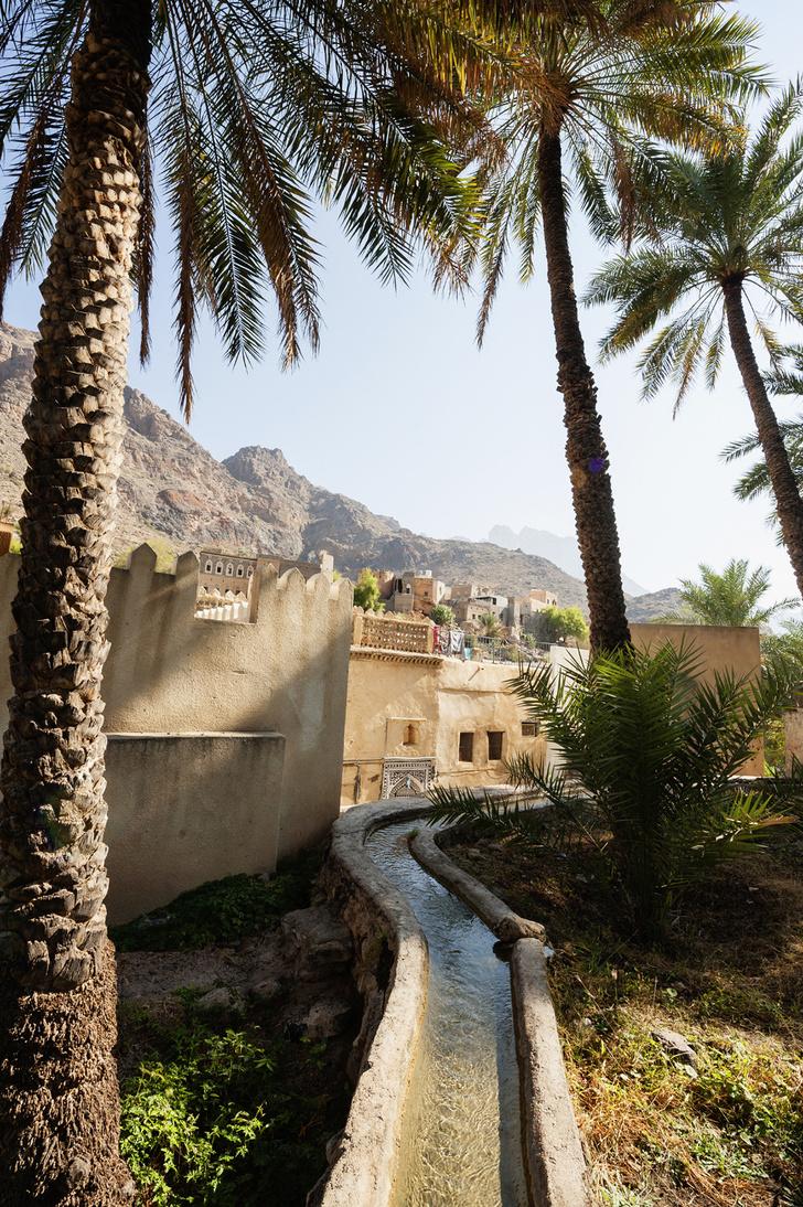 Фото №4 - Если в кране нет воды: афладж как центр жизни в Омане