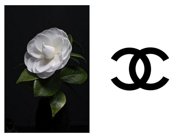 Фото №1 - Райские сады в Париже: «зеленый» показ Chanel