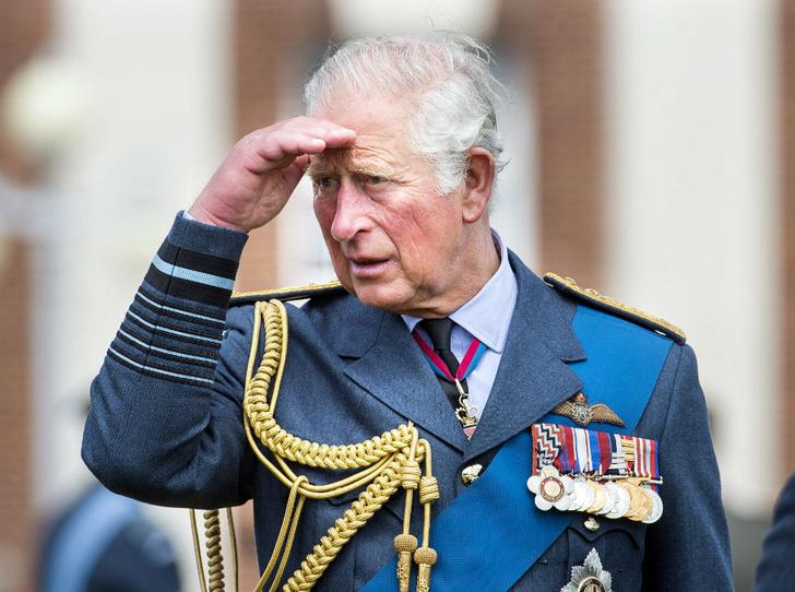 Фото №1 - Судьба титула: кто станет следующим принцем Уэльским
