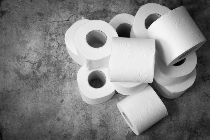 Фото №1 - Ученые выяснили, кто скупал туалетную бумагу во время пандемии