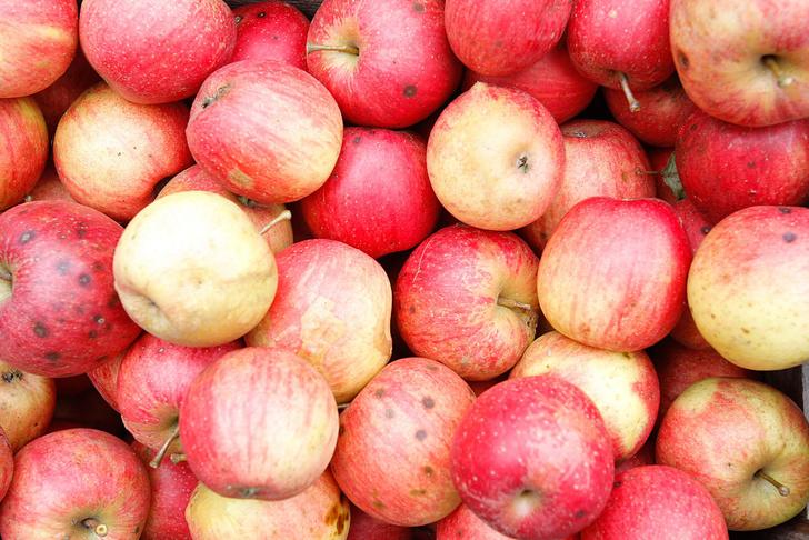 Фото №1 - Как правильно мыть яблоки
