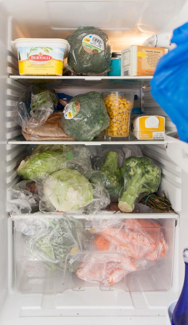 Фото №29 - Что лежит в холодильнике у жителей разных стран: 54 любознательных фото