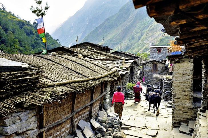 Фото №9 - Гора на плечах: кто несет вещи покорителей Эвереста