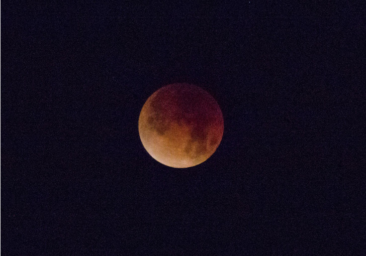 Фото №1 - SpaceX отложила первый туристический полет к Луне