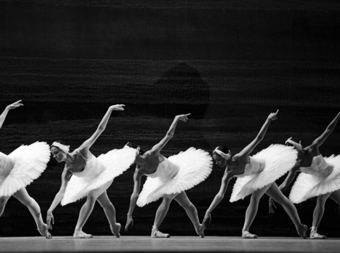 Фото №1 - Балет, кино и фотография в Люмьерах
