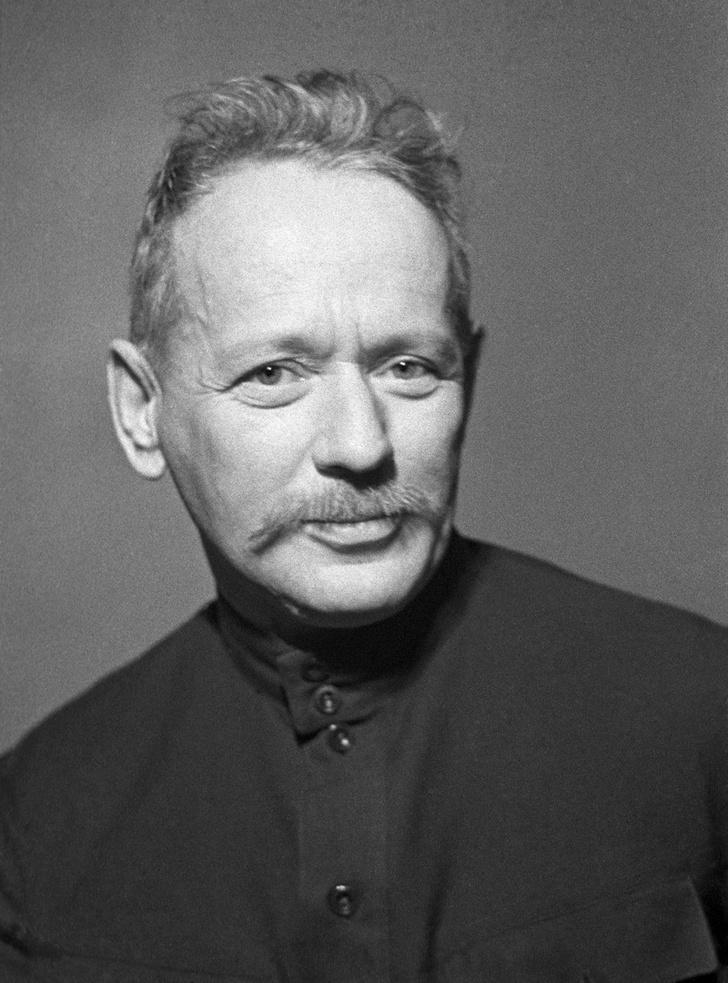 Фото №4 - Важно знать: 5 нобелевских лауреатов по литературе из России