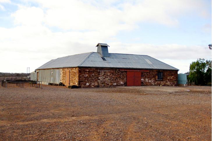 Фото №7 - За черным пнем: жизнь фермеров австралийского аутбэка