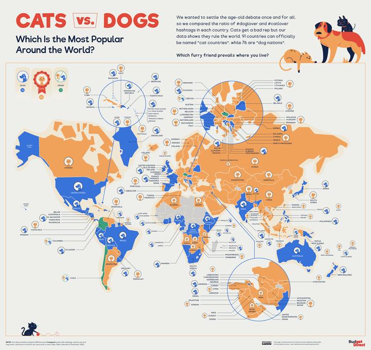 Фото №2 - Карта: где в мире больше любят кошек, а где— собак