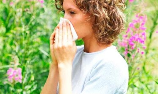 Фото №1 - В Петербурге начинает цвести... аллергия