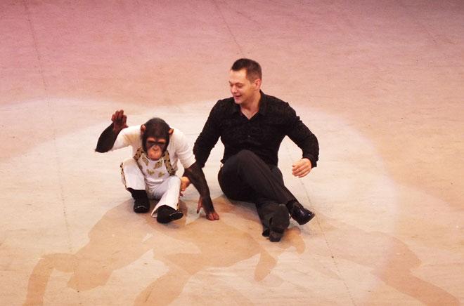 Фото №6 - Дан Запашный: «Шимпанзе Мальта ревнует меня к невесте»
