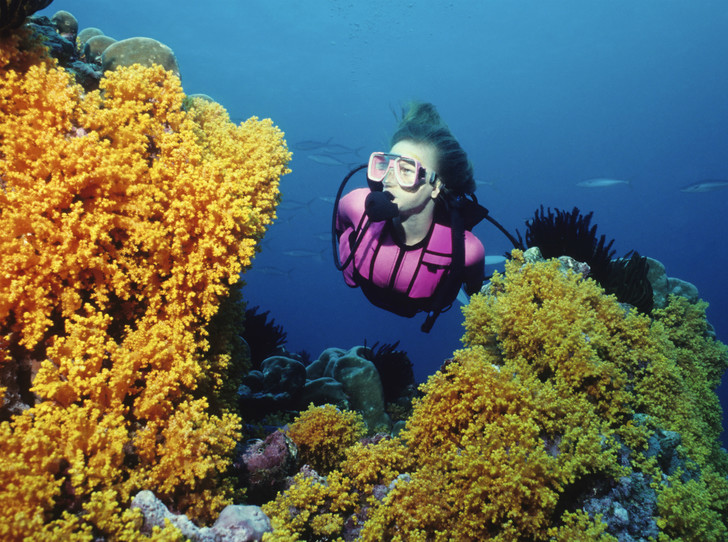 Фото №5 - Что такое коралловая вода, и можно ли похудеть с ее помощью