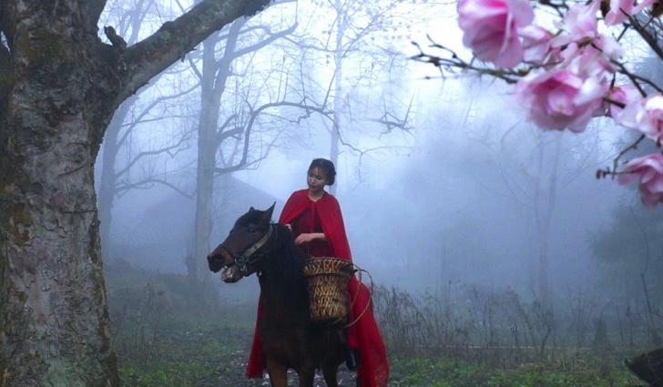 Фото №1 - За деревенским бытом китаянки следят 58 миллионов человек (видео)