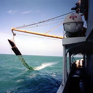 Фото №1 - Морские экосистемы Тихого океана будут охранять