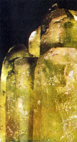 Фото №6 - В лес... за камнем