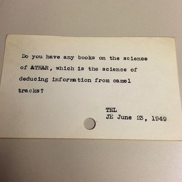Фото №9 - Принадлежит ли женщина к классу млекопитающих и другие смешные вопросы, которые задавали библиотекарям до появления Интернета