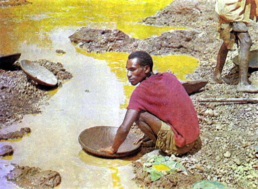 Фото №5 - «Ищите золото в земле…»