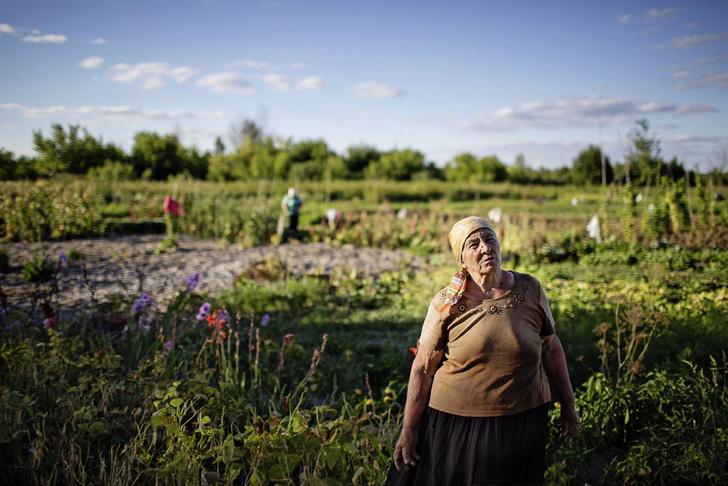 Фото №11 - Чернобыль: зона выживания