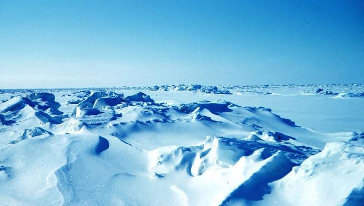Фото №1 - Российское правительство начало раздавать землю в Арктике
