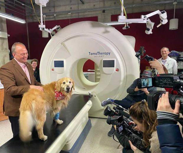 Фото №1 - Ветклиника вылечила пса, а хозяин отблагодарил их рекламой за $6 млн (видео)