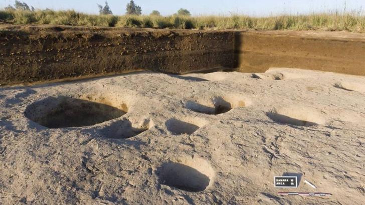 Фото №1 - В Египте обнаружили поселение эпохи неолита