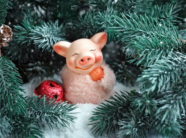 Фото №4 - 10 самых неудачных новогодних подарков
