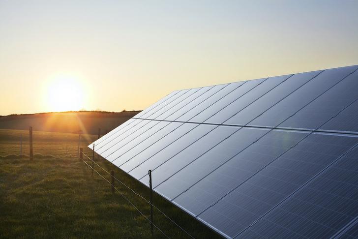 Фото №3 - Солнце, ветер и биотопливо: 5 примеров альтернативной энергетики