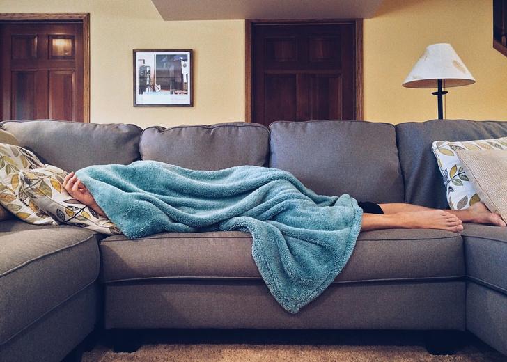 Фото №1 - Краткий гид по искусству быстрого дневного сна