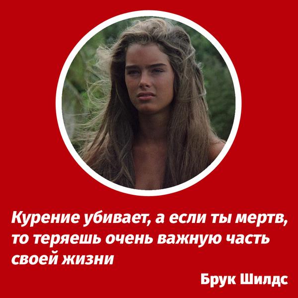 Фото №3 - 10 очень глупых цитат известных людей