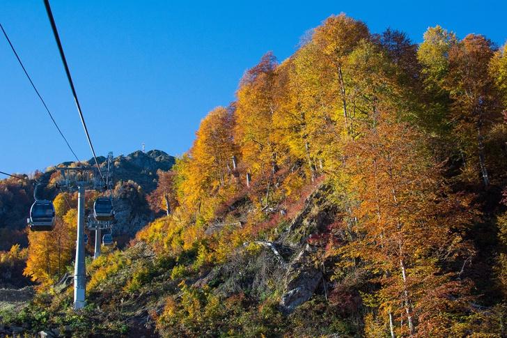 Фото №5 - 7 причин поехать в горы осенью