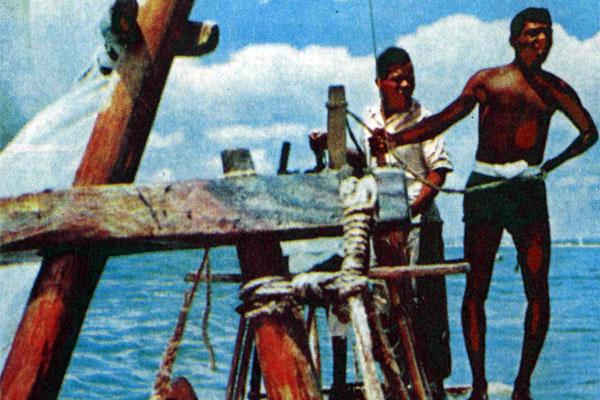 Фото №1 - Жангада выходит в море