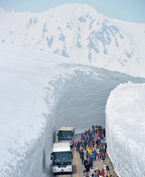 Фото №1 - Снежный путь