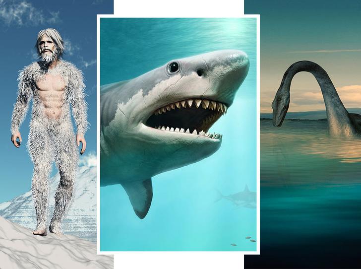 Фото №1 - От Несси до снежного человека: 4 самых загадочных существа в истории