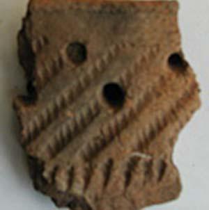 Фото №1 - Доисторические люди обнаружены в Греции