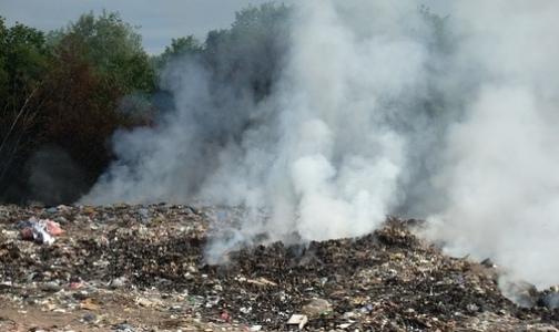 Фото №1 - Из-за пожара на свалке страдают астматики Московского района и Пушкина