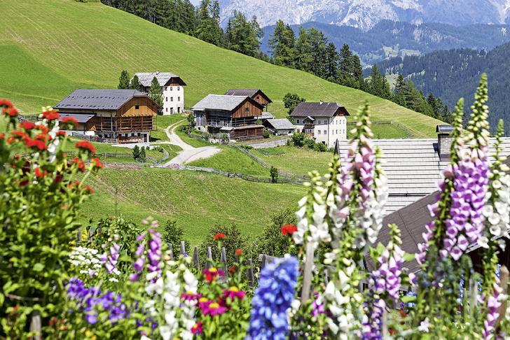 Фото №11 - Горные подкаблучники: традиции альпийского народа