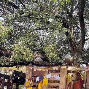 Фото №1 - В Индии украли священные реликвии
