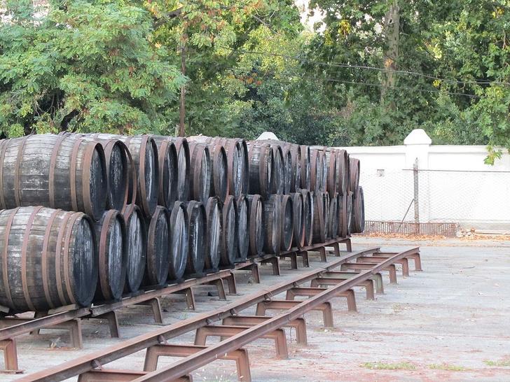 Фото №1 - Гости Ялты почувствуют себя настоящими виноделами