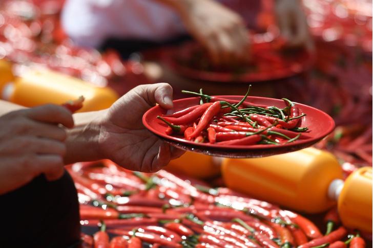 Фото №1 - Ученые выяснили, полезен ли перец чили