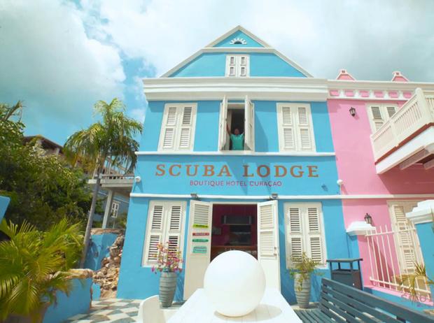 Фото №24 - Котики, вперед: отели, в которых на правах хозяев живет кое-кто еще