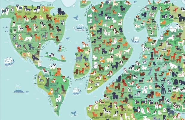 Фото №1 - Карта пород собак по странам их происхождения