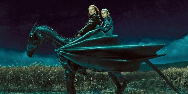 Фото №1 - «Хогвартс. Наследие»: 10 самых интересных фактов о новой игре по вселенной «Гарри Поттера» ✨